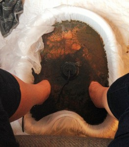 Ionic Detoxification Foot Bath | Holistic Aging
